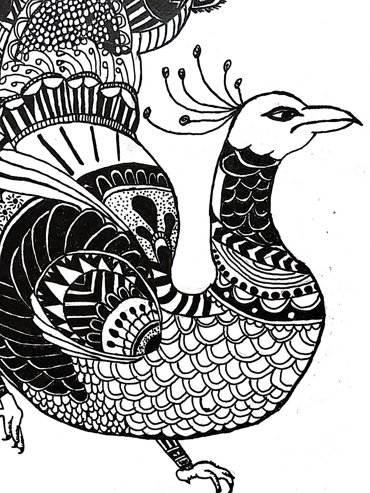 神鸟凤凰 手绘