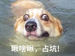字节跳动,享受韵律#¥%¥#%#¥