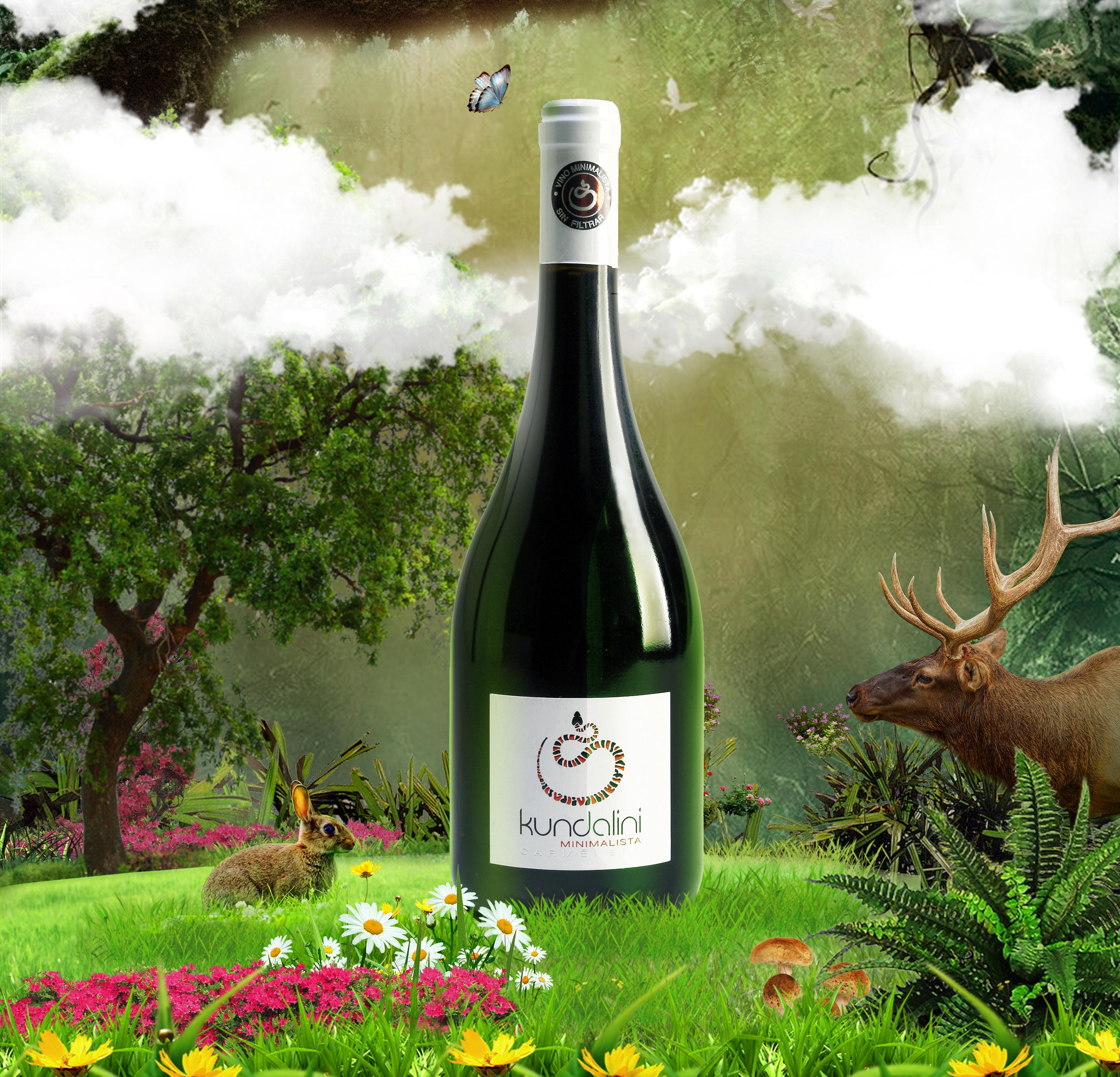 长城 法国 干红 干红葡萄酒 红酒 进口 酒 拉菲 葡萄酒 网 张裕 2957图片