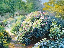 开满鲜花的庭院