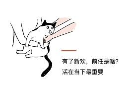 你要跟猫学习一下:假装独立,适度撒娇,几乎不动心