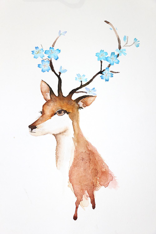 水彩-鹿与猫