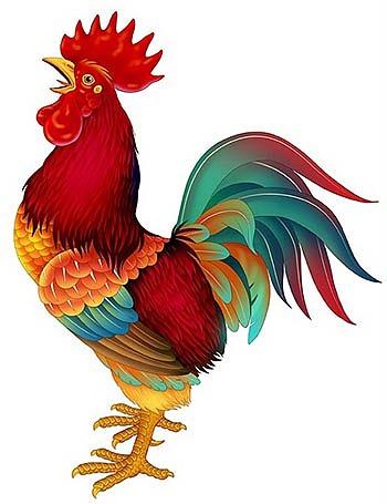 手绘工笔鸡(彩色鸡)