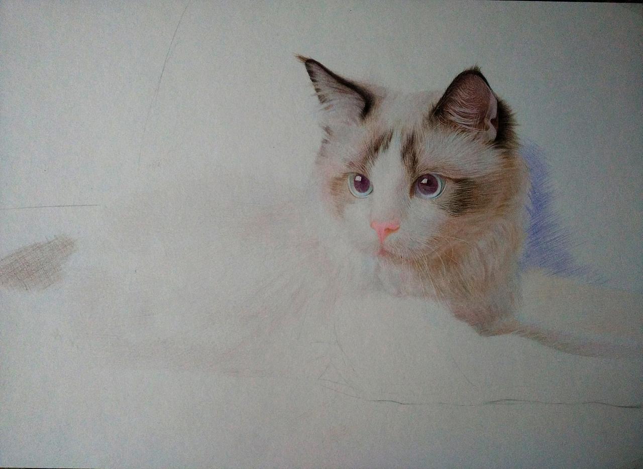 彩铅手绘----《可爱的喵星人》—mm