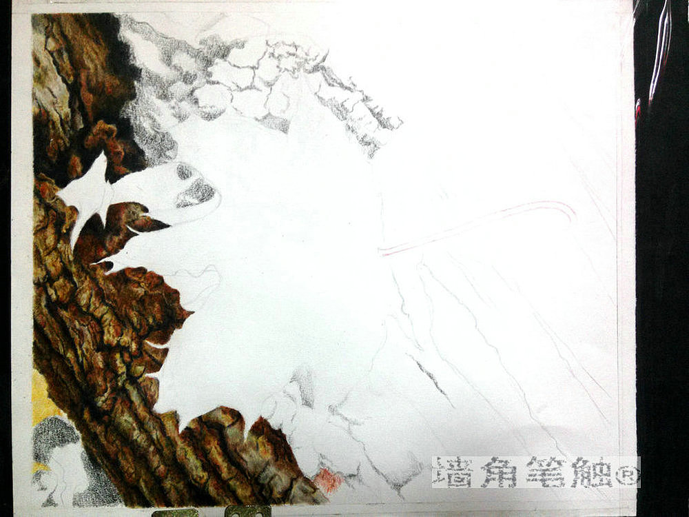 彩铅——【wallpainter手绘工场】孤独的秋叶