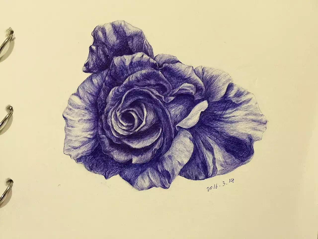 圆珠笔玫瑰