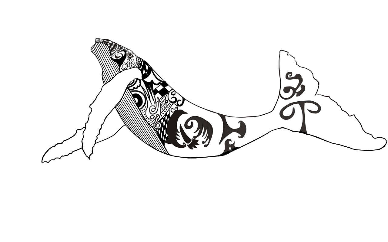 鲸鱼黑白板绘装饰插画