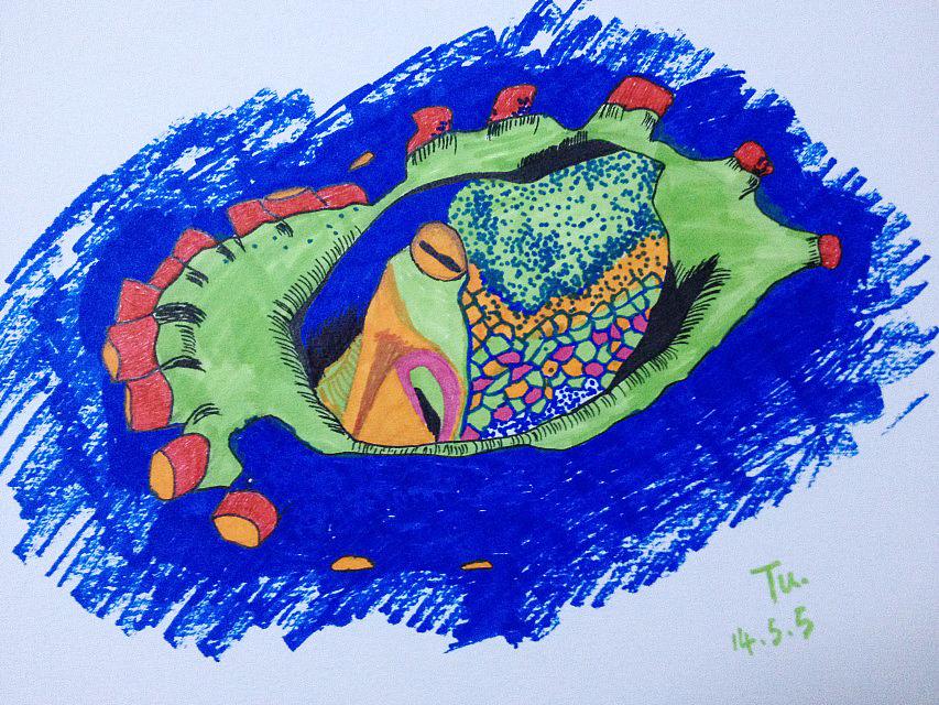 马克笔手绘 海洋生物一枚