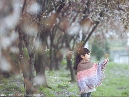 春风又见红叶李