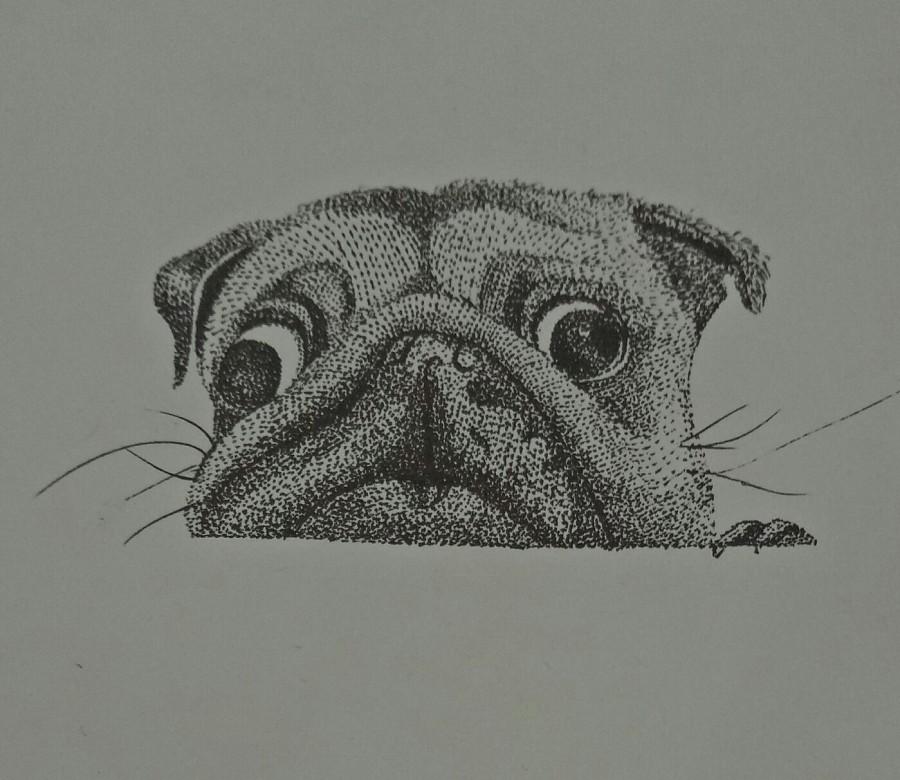 原创作品:手绘彩铅画