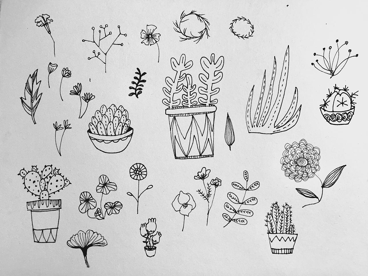 手绘植物|插画|插画习作|冰糖瘦子 - 原创作品 - 站酷