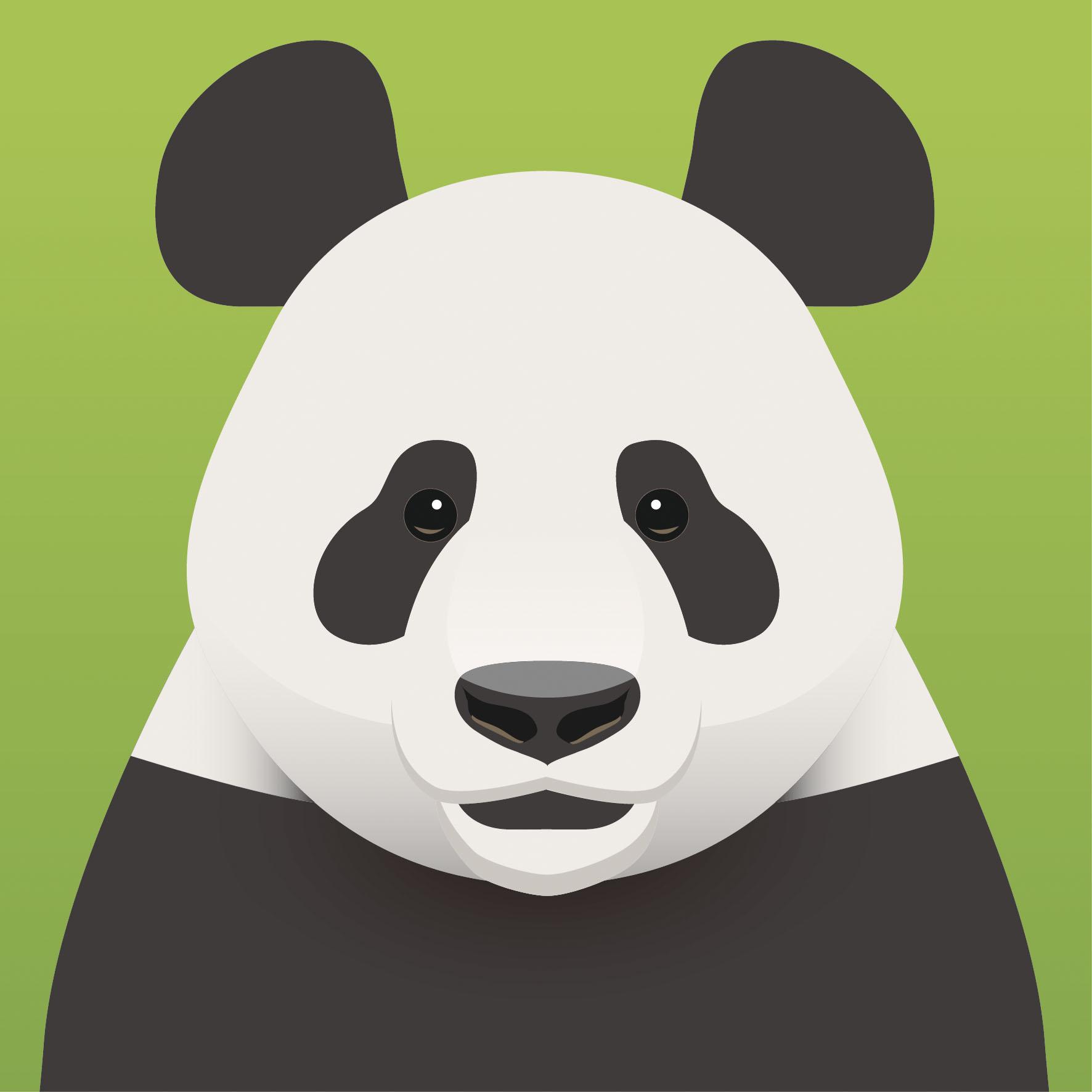 四川唐家河保护区野生动物平面头像设计2.0图片