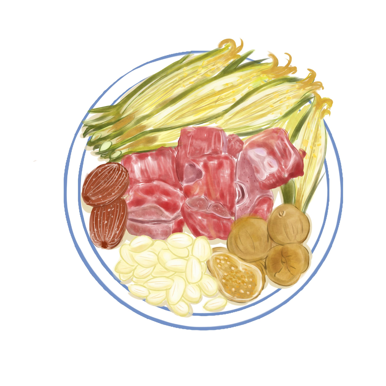 手绘汤疗食材