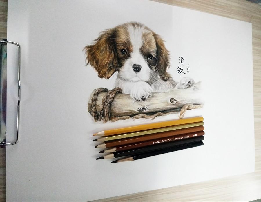 彩铅手绘|彩铅|纯艺术|李清敏