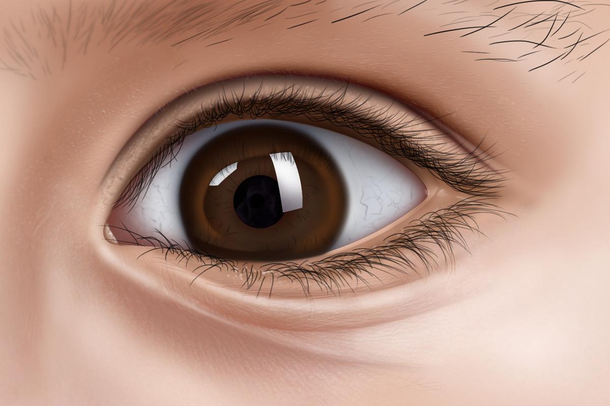 手绘眼睛|插画|插画习作|刘慧1 - 原创作品 - 站酷