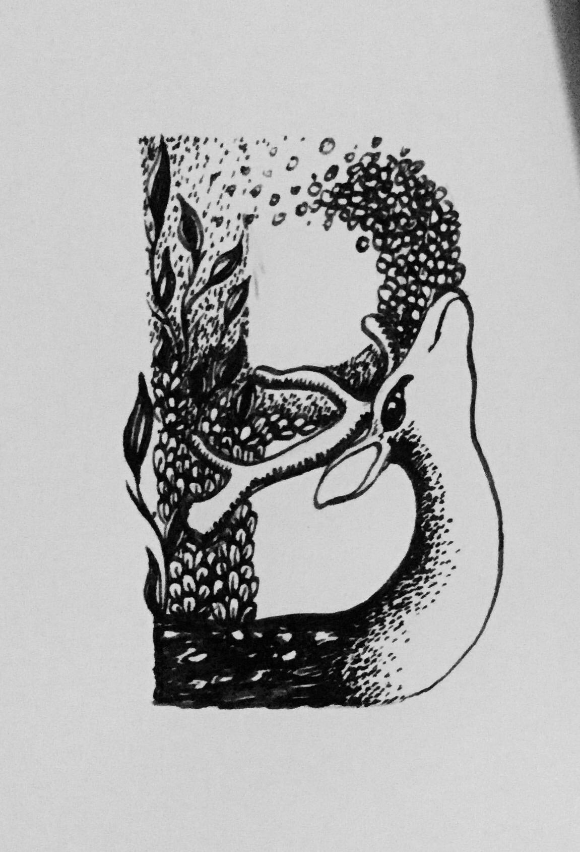 字母手绘线描稿