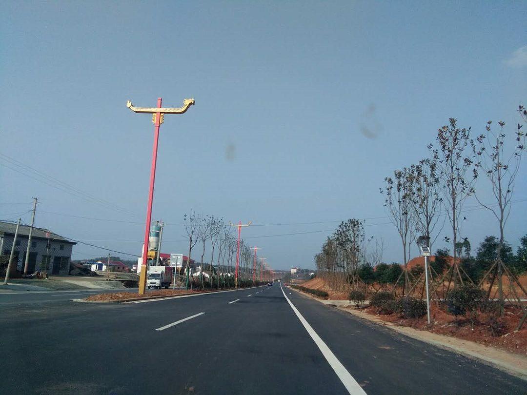 世博光电生产定做端午龙舟景观路灯厂家