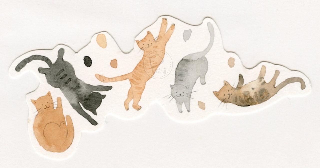 小熊猫课堂创办人小熊猫胖哒 水彩画 卡通插画 卡通