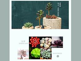 多肉植物专题页