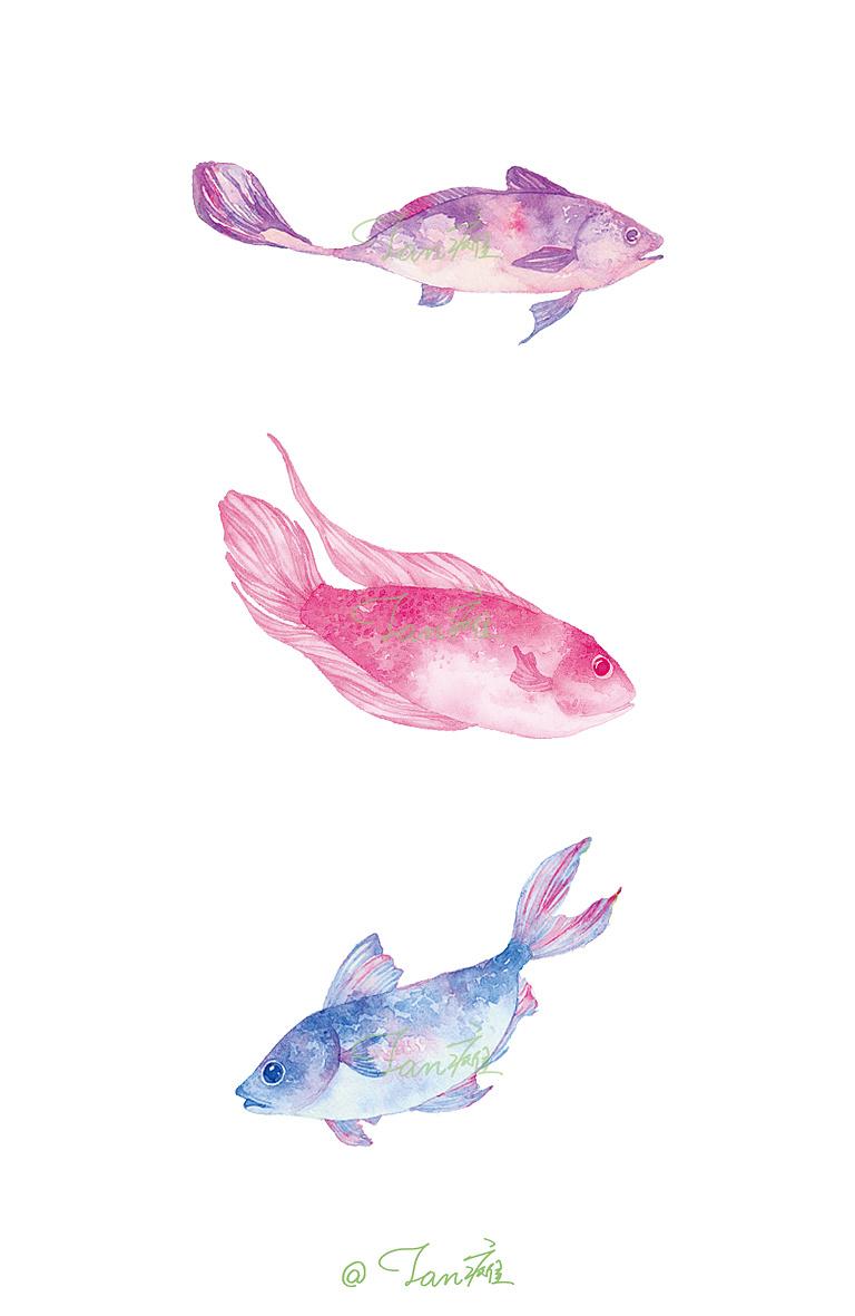 《鱼》水彩手绘插画