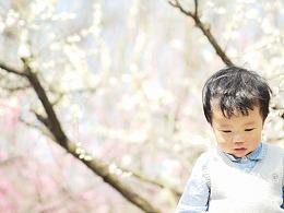 種桃種李種春風