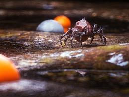 《自由世界》:Insect