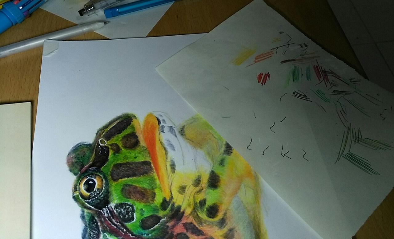 牛蛙临摹|纯艺术|其他艺创|yq手绘 - 原创作品 - 站酷
