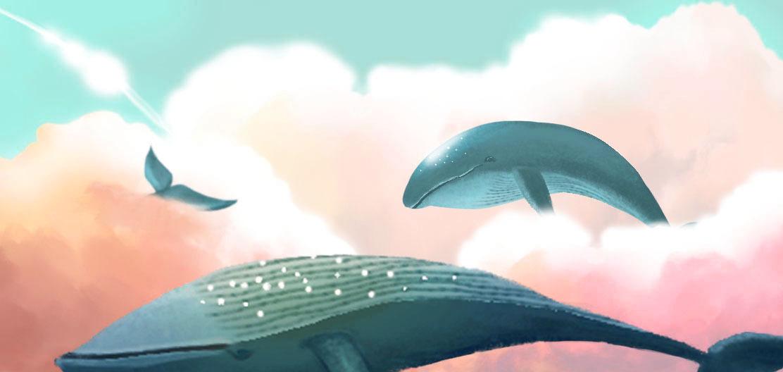 蓝鲸手绘壁纸电脑