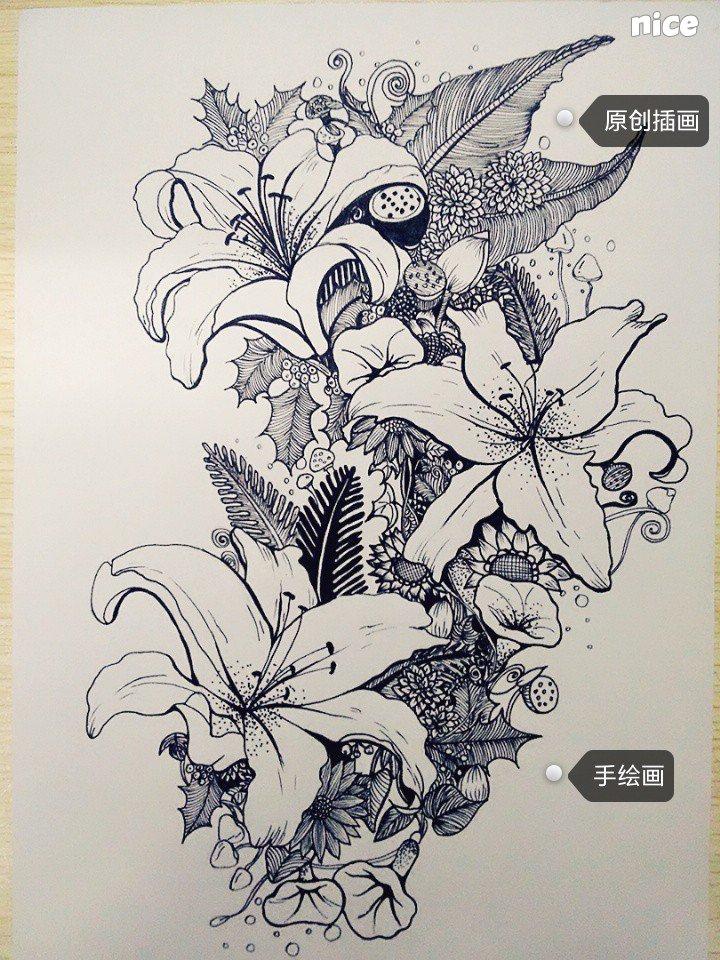 原创植物黑白装饰插画