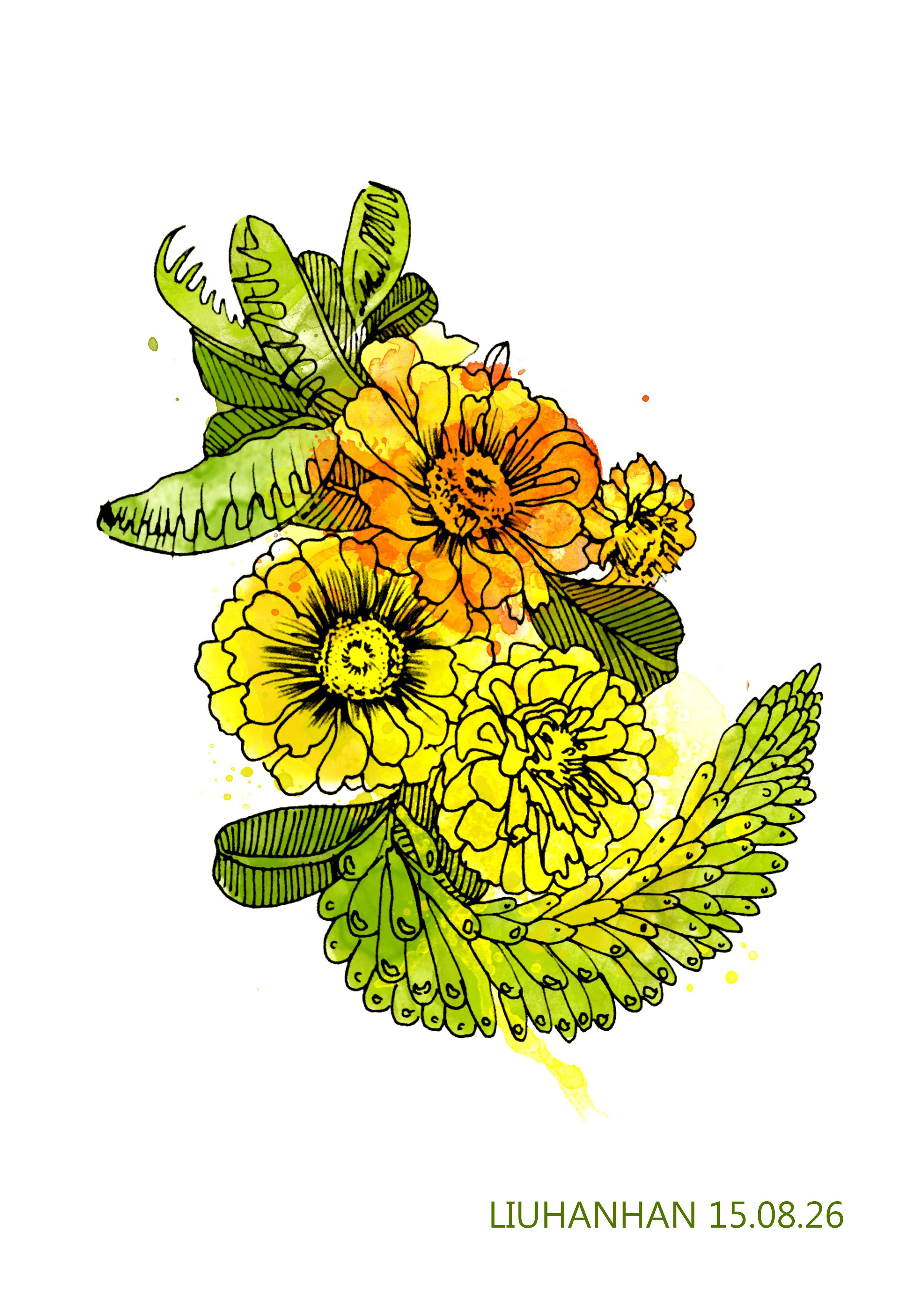 手绘水彩花|平面|图案|galaxy寒 - 原创作品 - 站酷