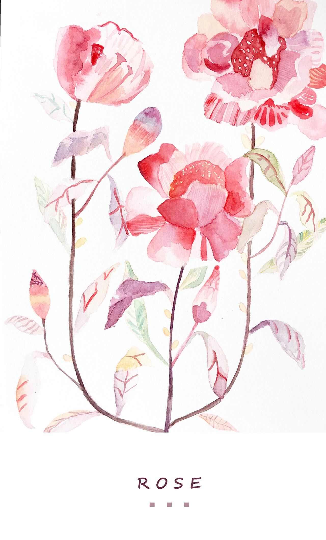 rose_手绘花卉