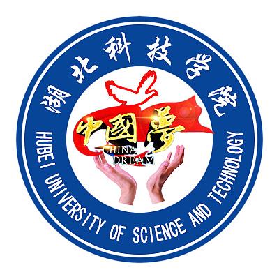 湖科文传学院志愿者团队logo|平面|标志|小小方方 -  图片