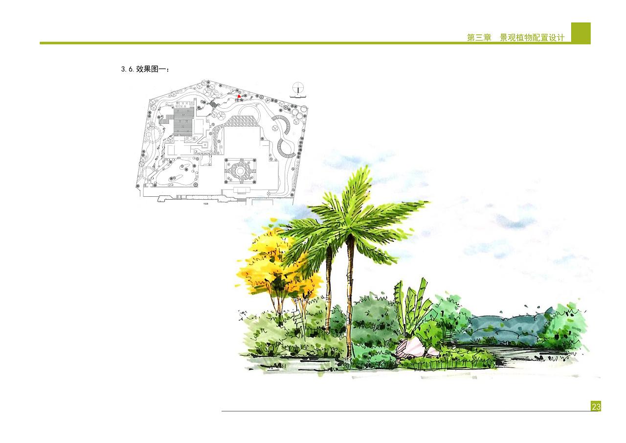 庭院景观植物设计方案