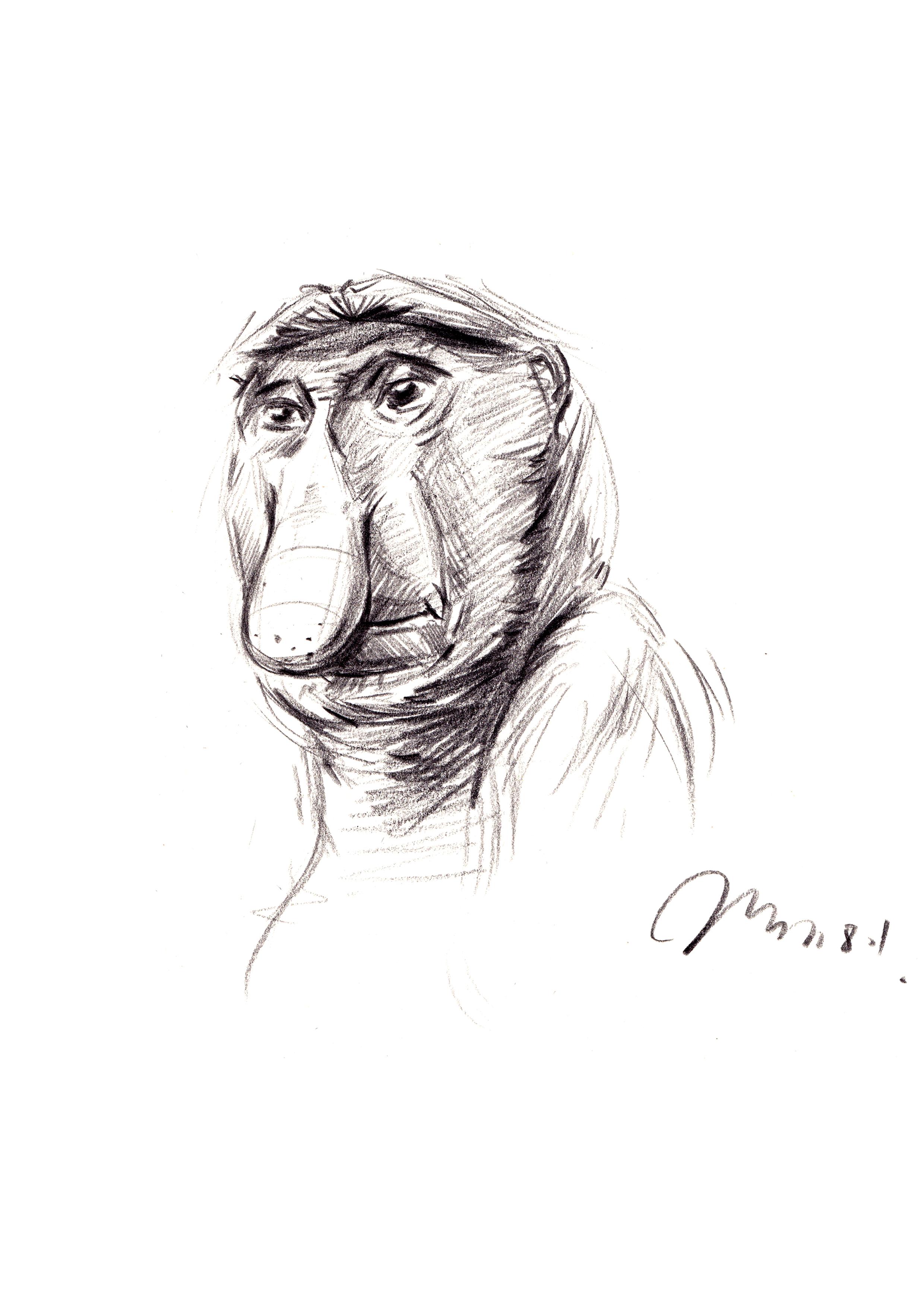 工业产品设计手绘之师法自然系列一 马赛(mars)作品
