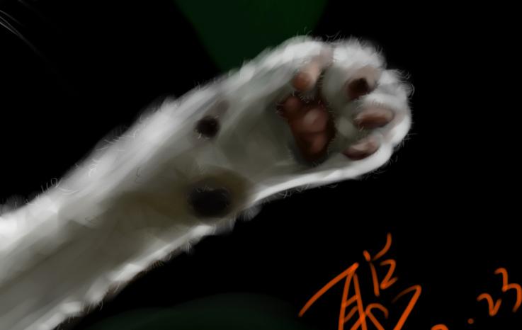手绘板手绘动物