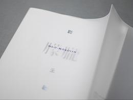 《新朦胧主义》书籍