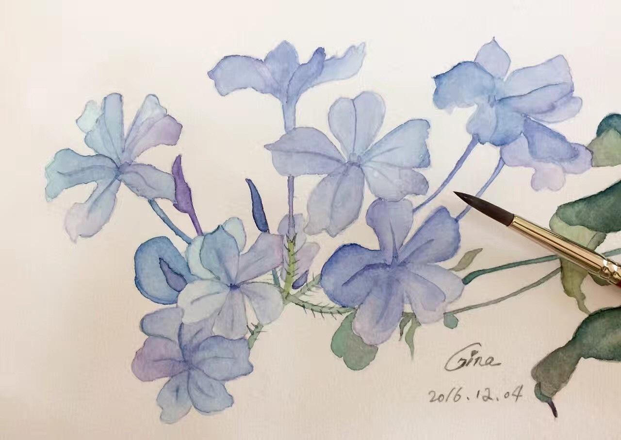 手绘水彩练习(长期贴)