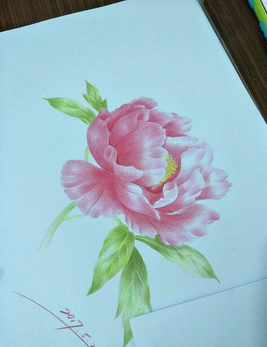手绘彩铅|纯艺术|彩铅|桃花绿水 - 原创作品 - 站酷