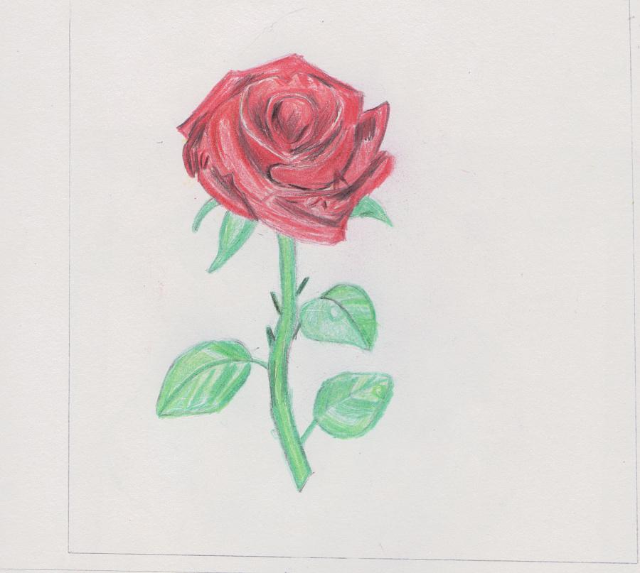 使用了:其他 - 铅笔       简单手绘