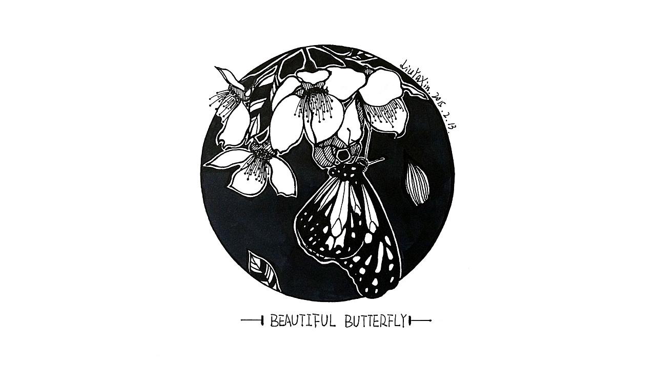 黑白手绘系列--蝴蝶