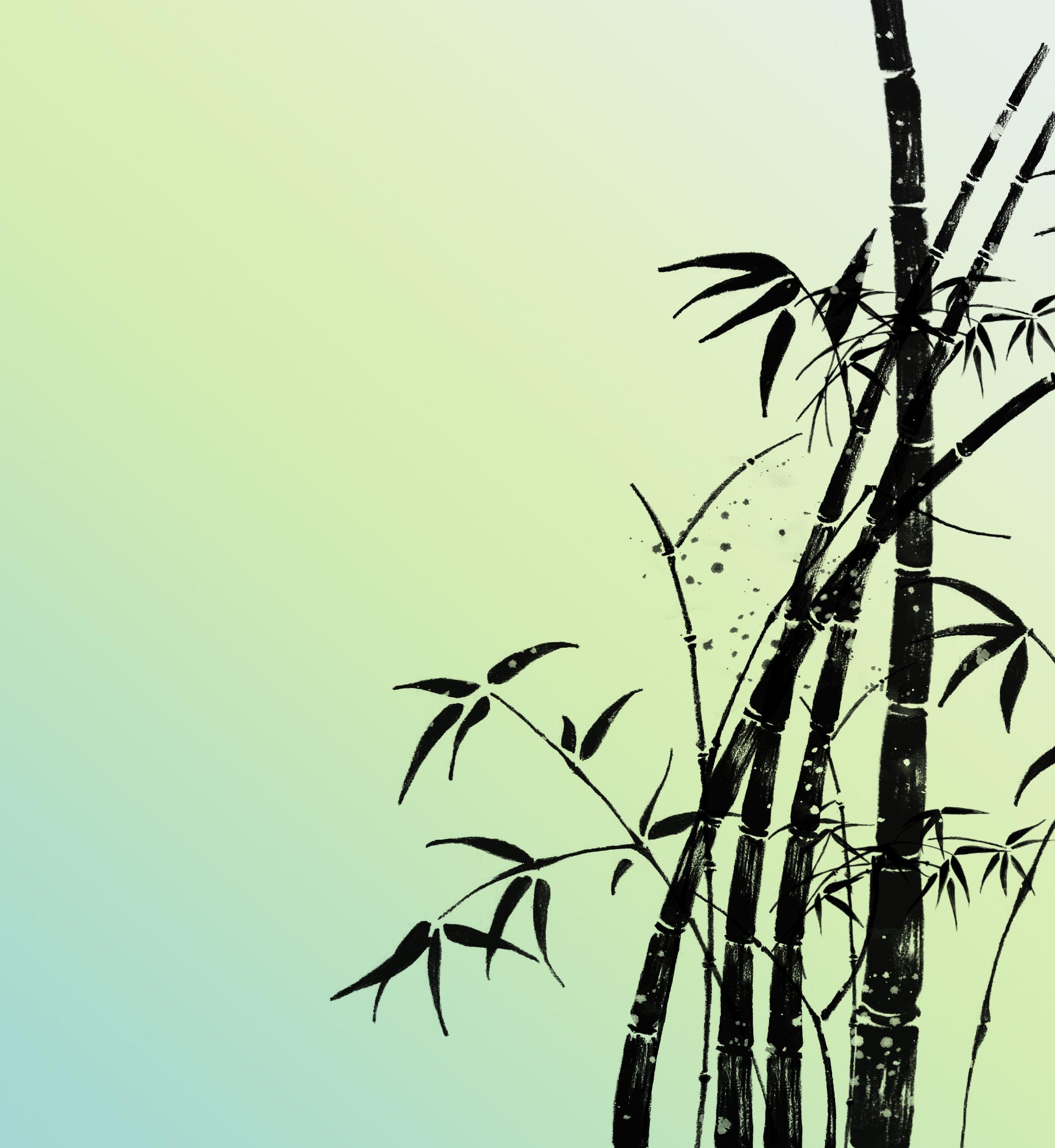 竹子钢笔画手绘图