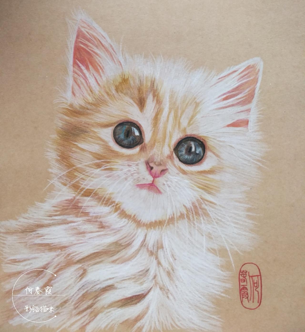 时隔两年再画了彩铅小动物,顺便也把两年前画的小猫咪改了一下