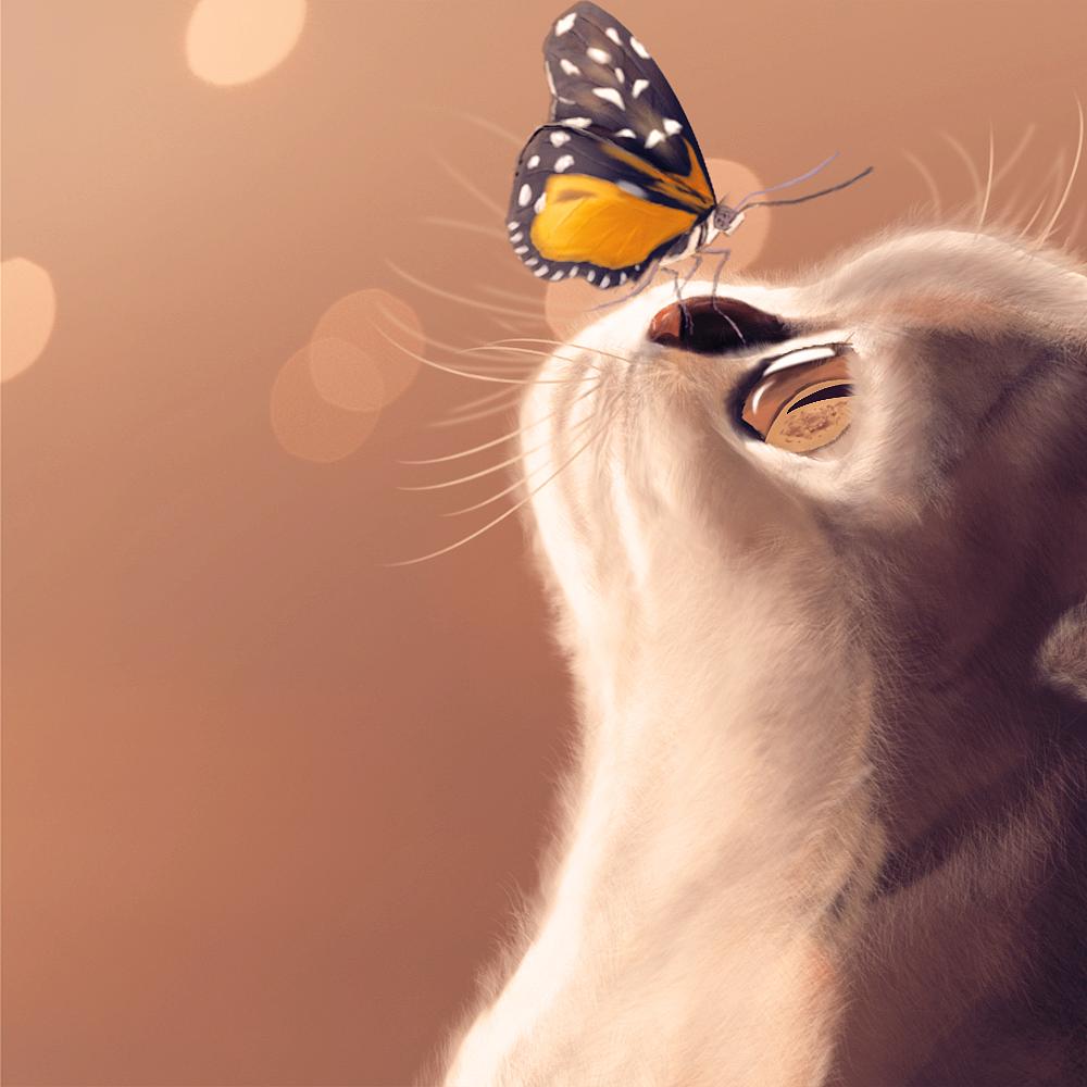 ps手绘猫-练习