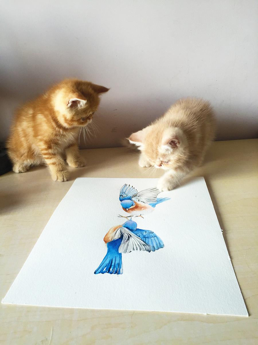 原创作品:水彩手绘--鸟