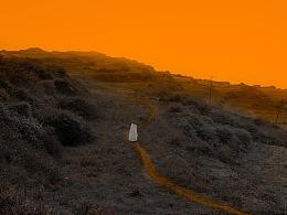 human orange