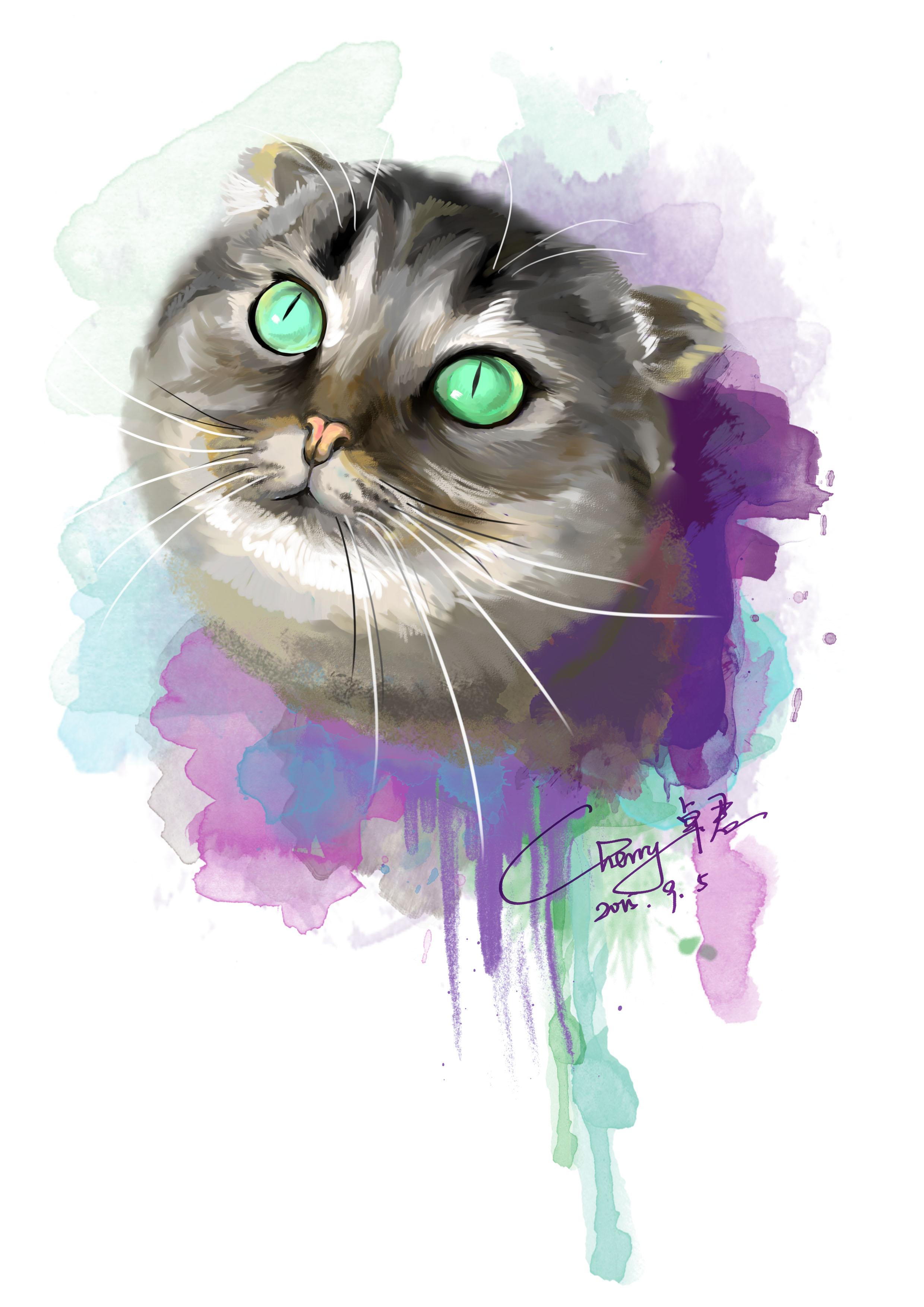 猫咪手绘作品超清图片
