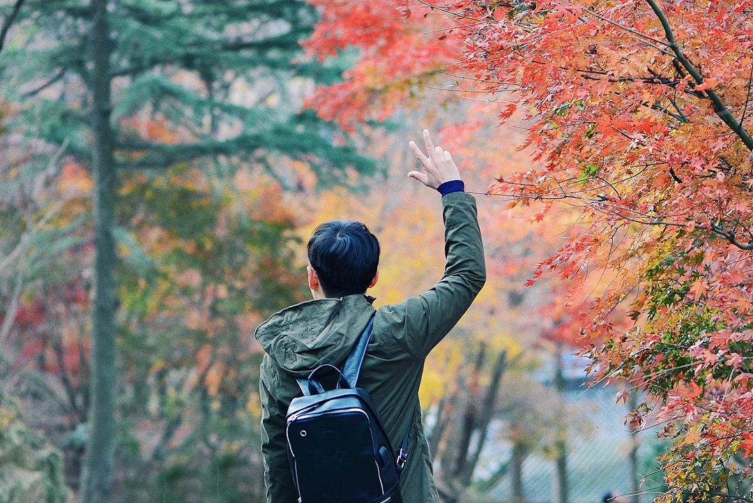 最美枫叶人物照片