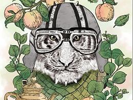 茶叶-水彩动物包装插画