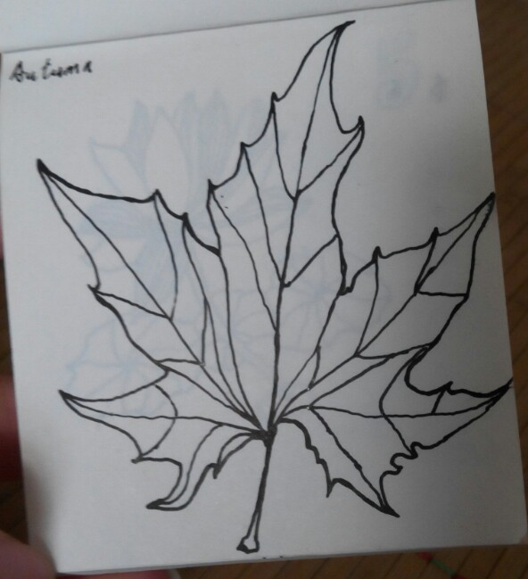 枫叶简笔画素描