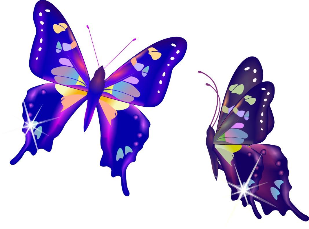 cdr 小蝴蝶